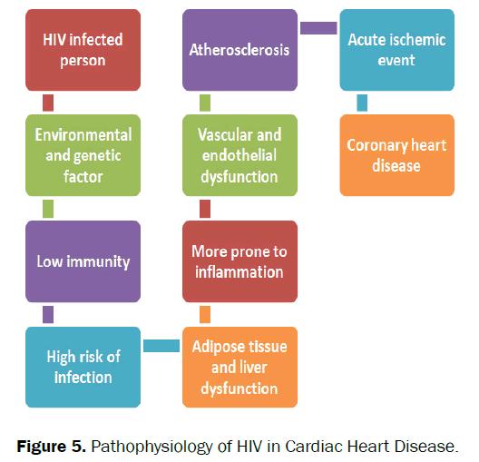 nursing-health-sciences-cardiac-heart-disease