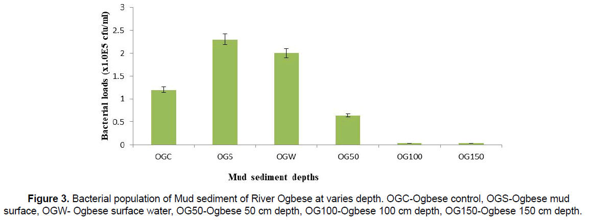 Ecology-Environmental-River-Ogbese