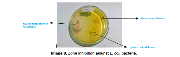 Journal-of-Chemistry-E-coli-bacteria