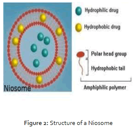 Pharmaceutics-Nanotechnology-Structure-Niosome