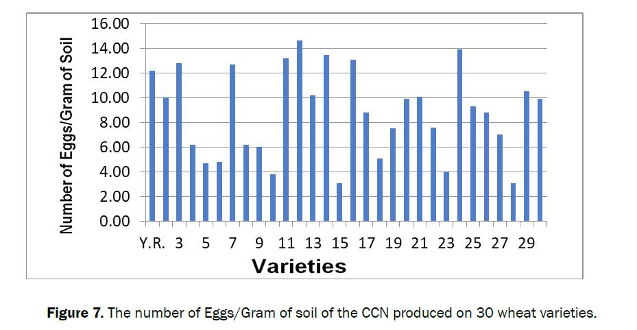 agriculture-allied-sciences-Gram-soil