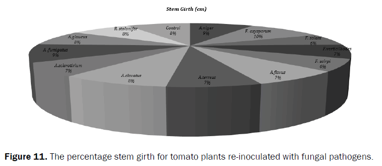 agriculture-and-allied-sciences-stem-girth