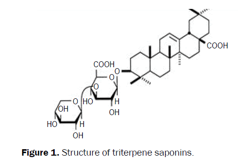 biology-triterpene