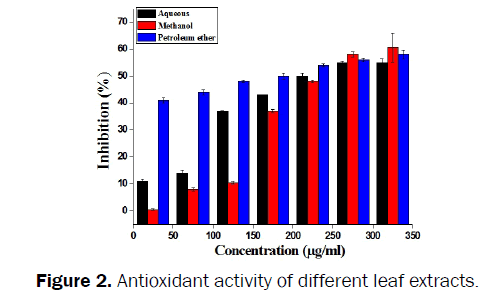 botanical-sciences-Antioxidant-leaf-extracts