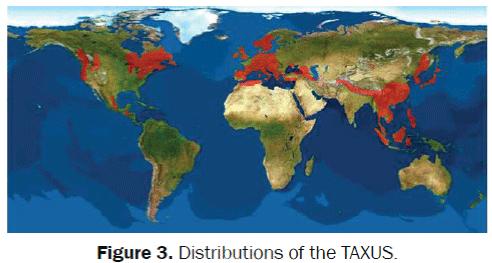 Distributions-AXUS