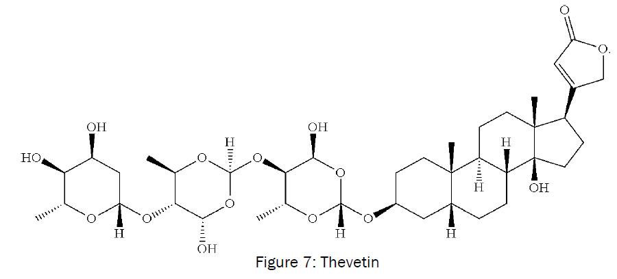 botanical-sciences-Thevetin