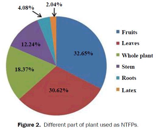 botanical-sciences-part-plant