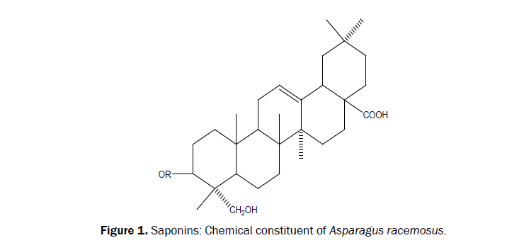 chemistry-Chemical-constituent
