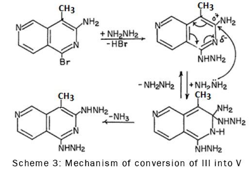Mechanism of conversion of III into V