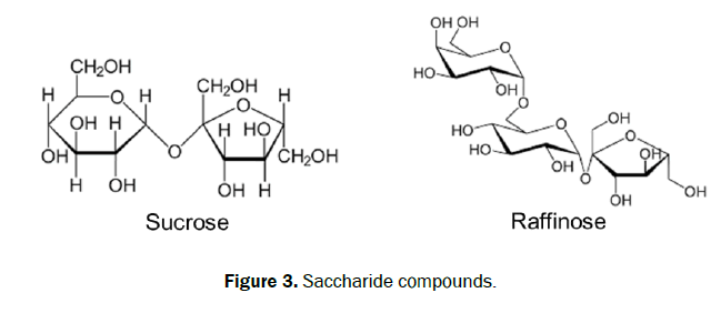 chemistry-Saccharide-compounds