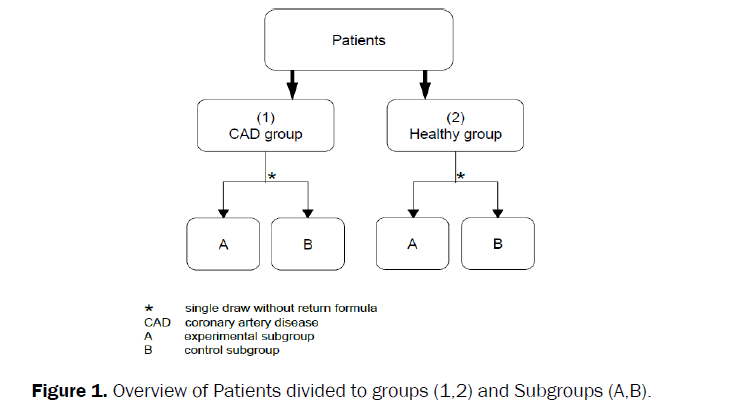 dental-sciences-Patients-divided-groups