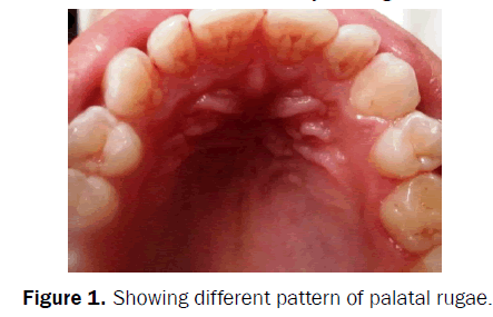 dental-sciences-pattern