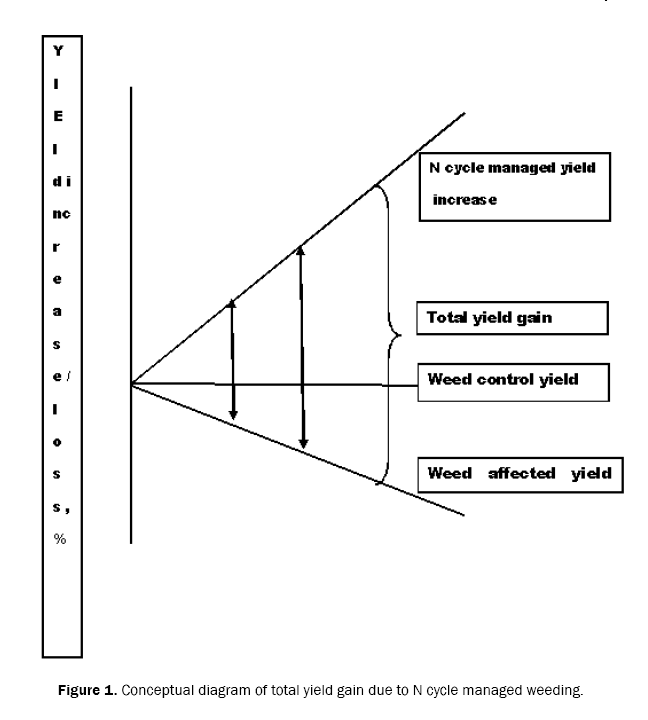 ecology-and-environmental-sciences-diagram