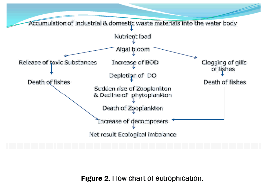 ecology-and-environmental-sciences-eutrophication