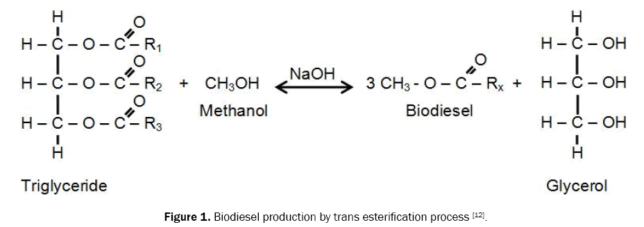 engineering-and-technology-esterification