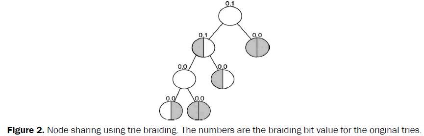 engineering-technology-Node-sharing-trie-braiding