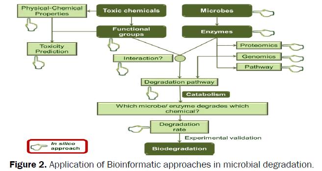 environmental-sciences-Application-Bioinformatic-approaches