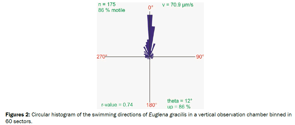 environmental-sciences-Circular-histogram-swimming-directions