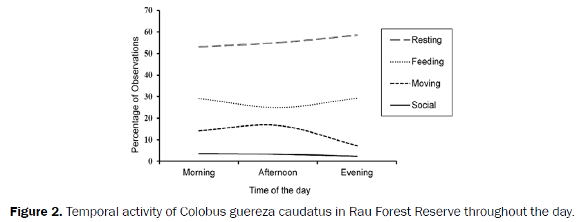 environmental-sciences-Temporal-activity-Colobus-guereza