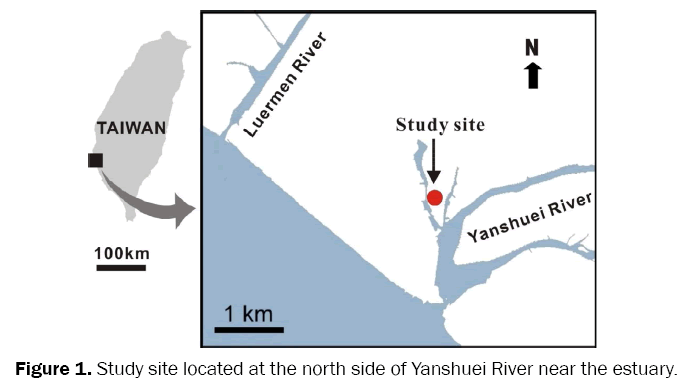 environmental-sciences-Yanshuei-River