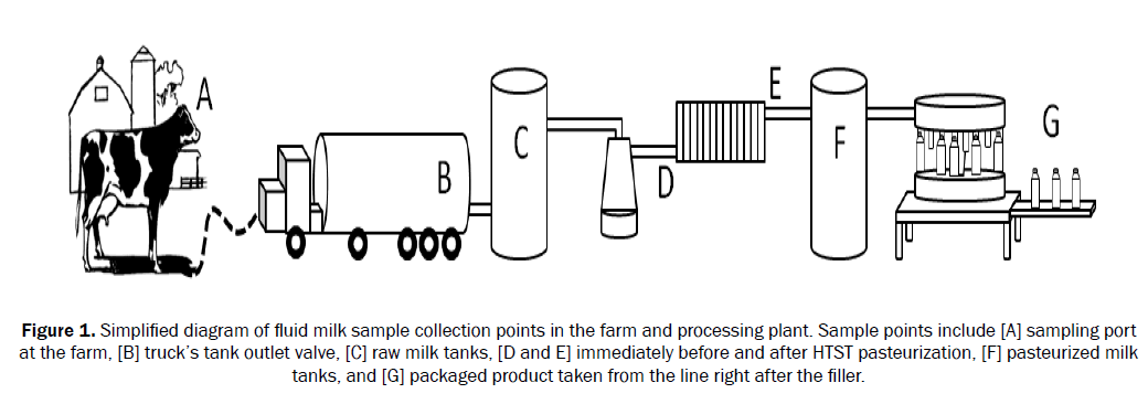 food-and-dairy-technology-diagram