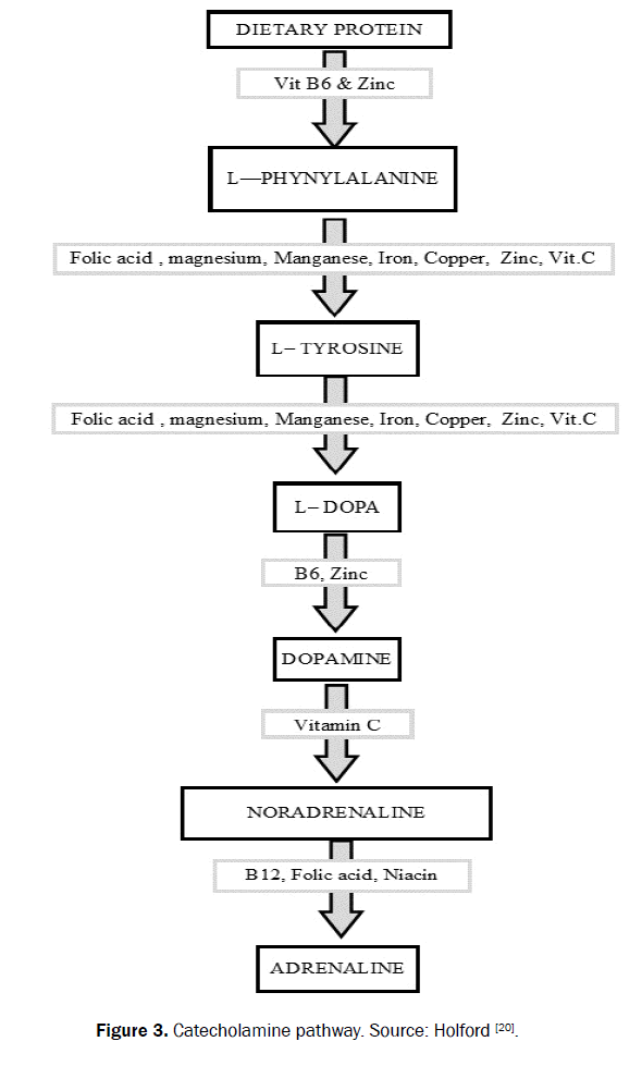food-and-dairy-technology-pathway