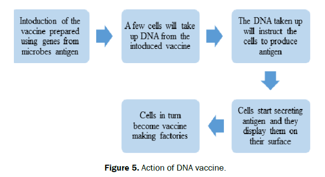 hospital-and-clinical-DNA-vaccine