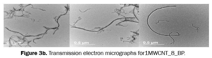 material-sciences-electron-micrographs
