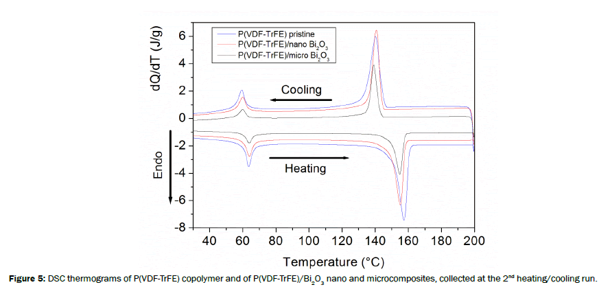 material-sciences-thermograms-copolymer-nano