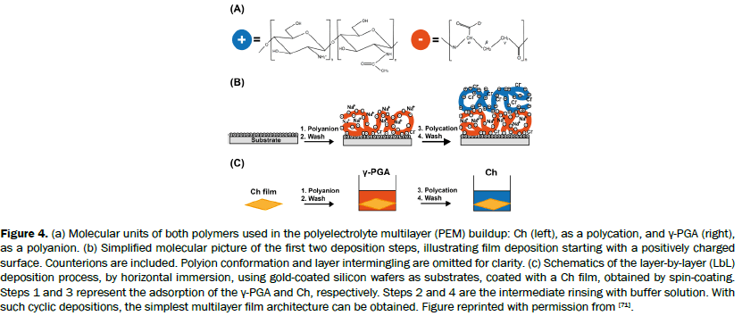 material-sciences-polyelectrolyte