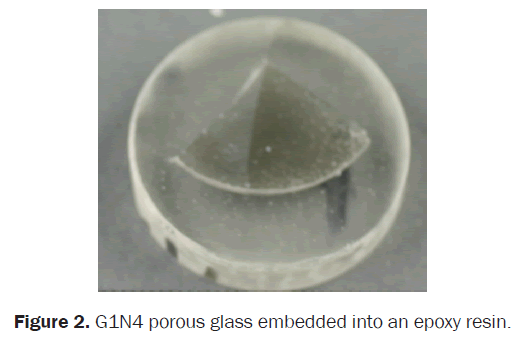 material-sciences-porous-embedded-epoxy