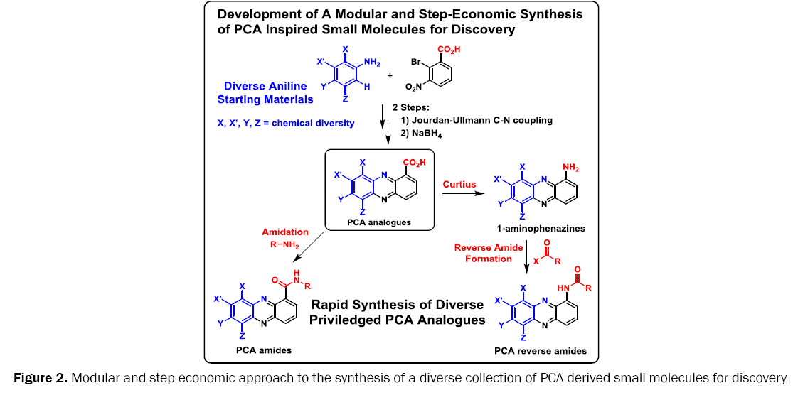 medicinal-organic-chemistry-step-economic-approach