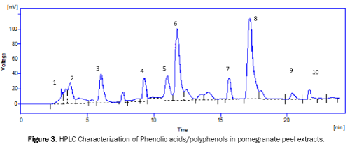microbiology-and-biotechnology-HPLC-Characterization-of-Phenolic