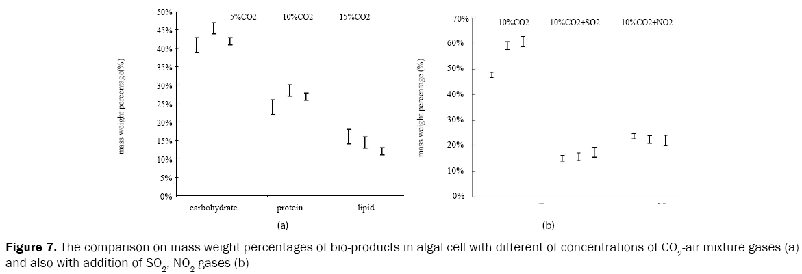 microbiology-and-biotechnology-comparison-mass-weight-percentages