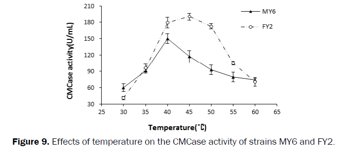 microbiology-biotechnology-Effects-temperature-strains