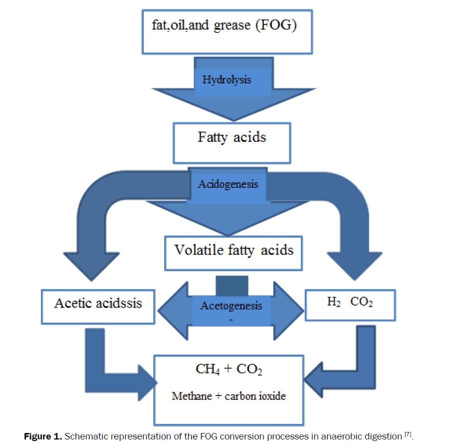 microbiology-biotechnology-Schematic-representation