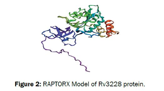microbiology-biotechnology-model