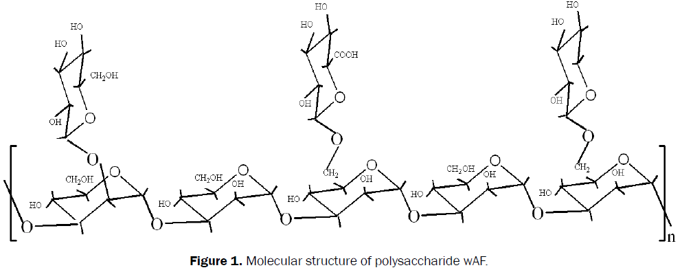pharmaceutical-sciences-Molecular-structure-polysaccharide-wAF