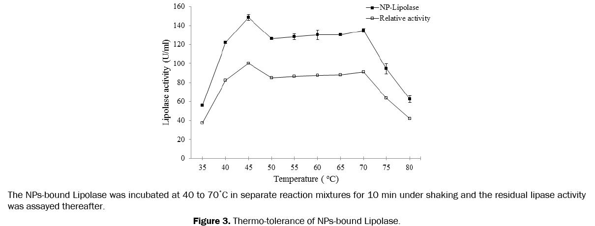 pharmaceutics-nanotechnology-Thermo-tolerance-NPs-bound