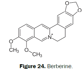 pharmacognosy-phytochemistry-Berberine