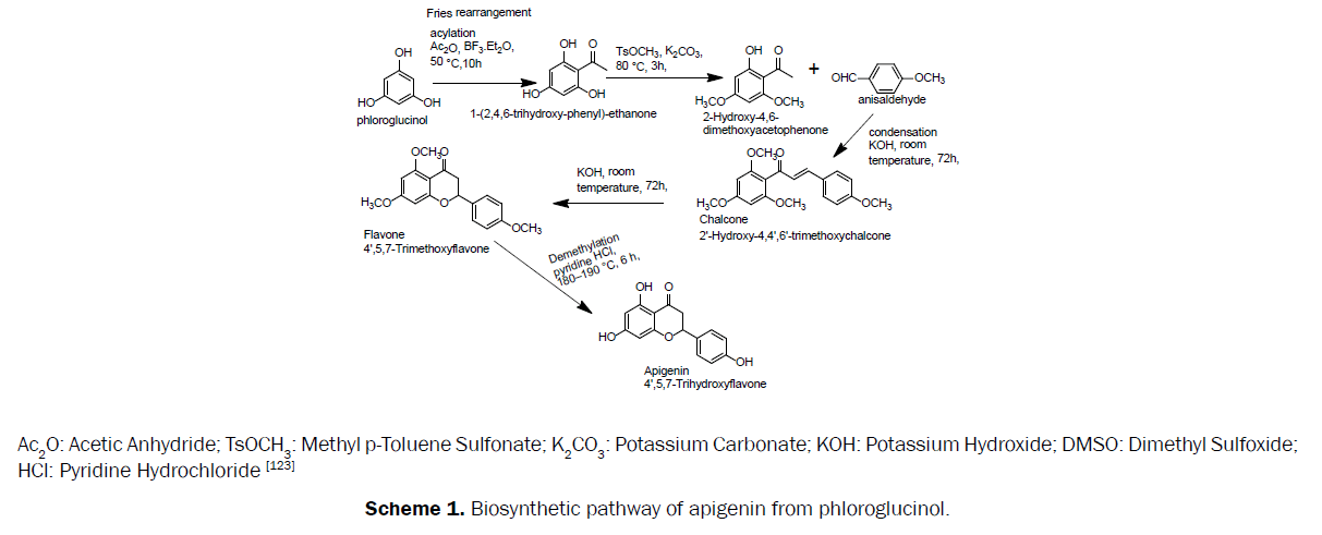 pharmacognosy-phytochemistry-Biosynthetic-pathway