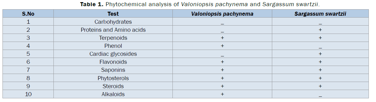 pharmacognosy-phytochemistry-Phytochemical-analysis-Valoniopsis