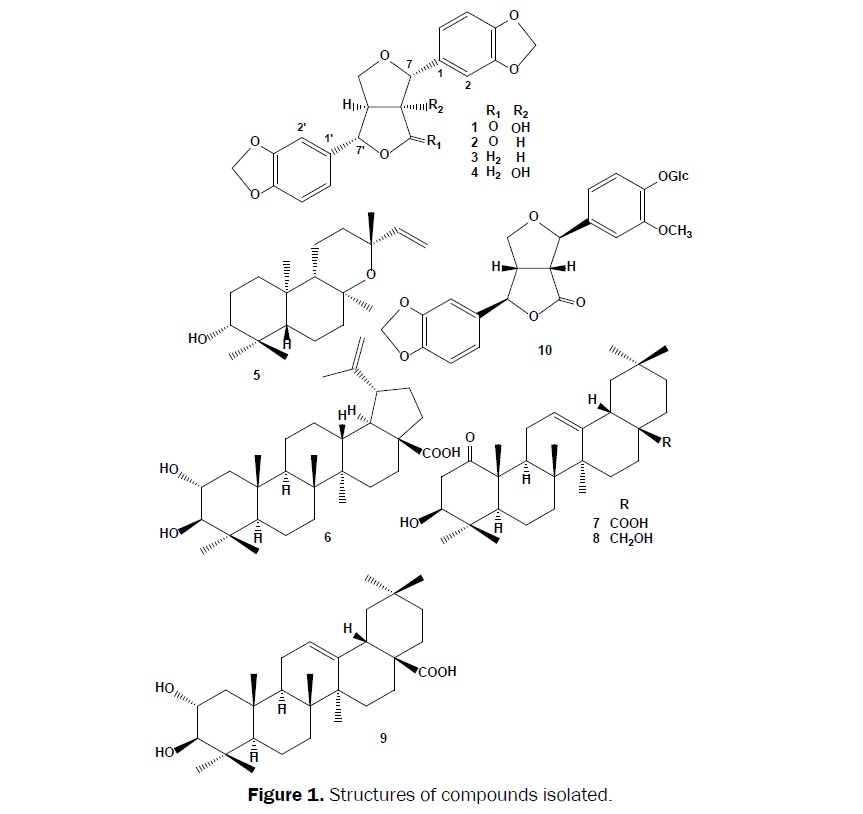 pharmacognosy-phytochemistry-Structures-compounds-isolated