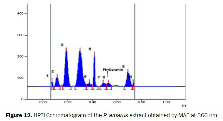 pharmacognosy-phytochemistry-extract-obtained-MAE