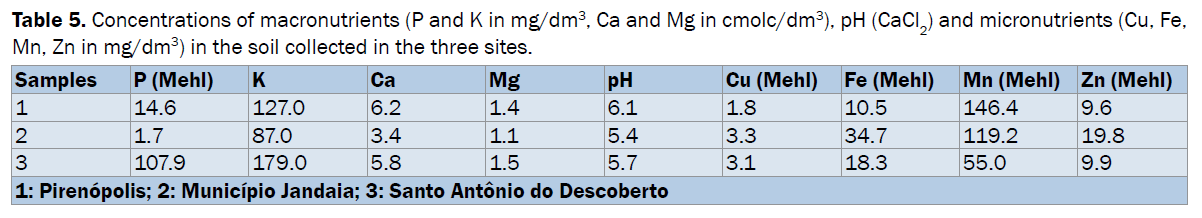 pharmacognosy-phytochemistry-macronutrients