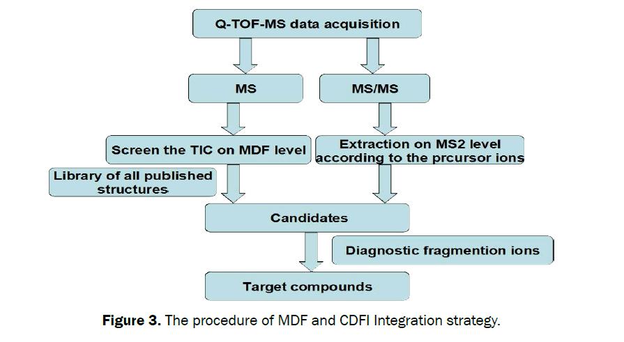 pharmacognosy-phytochemistry-procedure