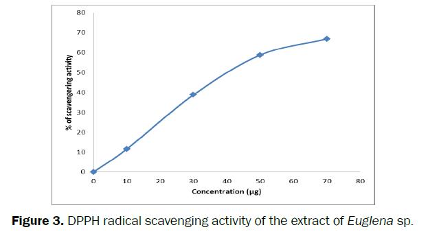 pharmacology-toxicological-studies-DPPH-radical-scavenging