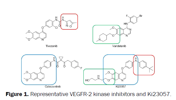 pharmacy-and-pharmaceutical-sciences-kinase-inhibitors