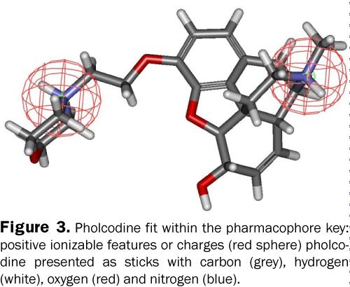 pharmacy-pharmaceutical-sciences-positive-ionizable