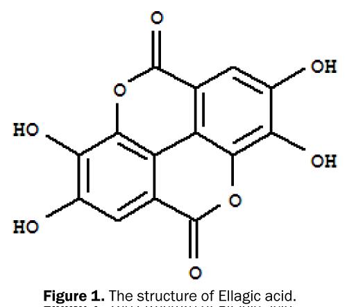 pharmacy-pharmaceutical-sciences-structure-Ellagic